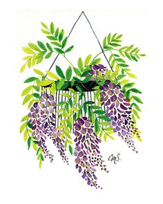 Mother's Day Gift Idea: Flower Prints, Wisteria