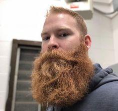 Beard No Mustache, Moustache, Epic Beard, Full Beard, Scruffy Men, Hairy Men, Beard Head, Redhead Men, Bearded Men