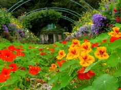 Monet's Garden and House in Giverny, France.