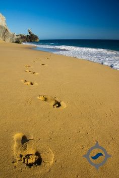 """Don't forget to """"fall back"""" an hour! Cabo friends, turn the clock back 1 hour and enjoy a little extra time with your """"toes in the sand."""""""