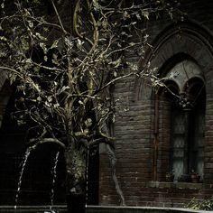 Gothic by Lumase, via Flickr