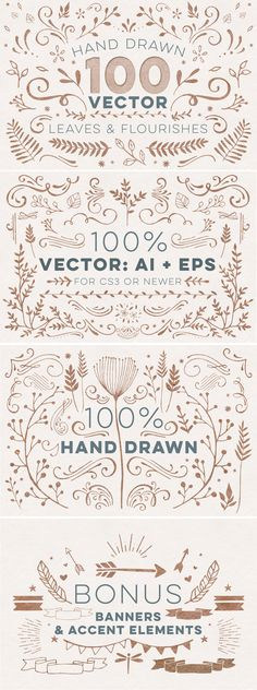 100+ Vector Leaves + Flourishes by everytuesday on Creative Market #designtools