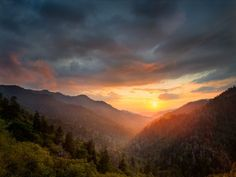 """4. Learn a little bit more about our <a href=""""http://www.onlyinyourstate.com/tennessee/great-smoky-mountains-tn/"""" target=""""_blank"""">most popular national wonder</a>..."""