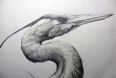 DeviantArt: More Collections Like Humming bird Bienenelfe Meehkolibri painting by IronAries
