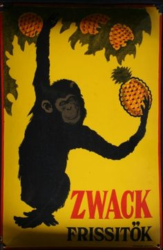 Reklámtábla, Zwack Frissitők is a pineapple-based version of the popular Hungarian digestif, Unicum. Vintage Advertisements, Vintage Ads, Vintage Posters, Retro Posters, Movie Posters, Hungary History, Budapest Hungary, Deco, 1