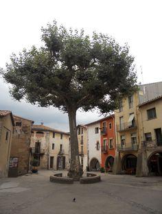 Arbúcies, plaça de la Vila, Catalonia
