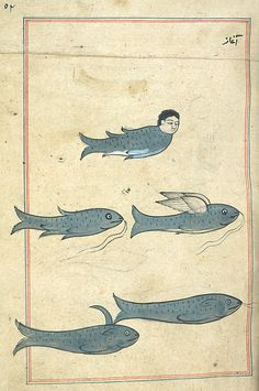Illustrations from Marvels of Things Created and Miraculous Aspects of Things Existing. Originally published in 1283.