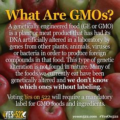 What are GMOs?! Learn more about Yes on 522 here: http://yeson522.com/about/faq