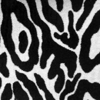 14824-583 Animal Skins Zebra by Duralee