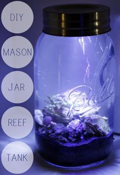 DIY MASON JAR AQUARIUM DIY Mason Jar Aquarium....