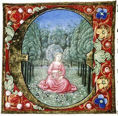 Douce Pliny - Florentine Venice 1476-38