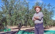 Olivenöl gegen Alzheimer -> https://www.zentrum-der-gesundheit.de/olivenoel-gegen-alzheimer-ia.html#utm_sguid=177591,6dcab1fb-2d05-9049-bed4-31305172cd9a #gesundheit #alzheimer #olivenoel