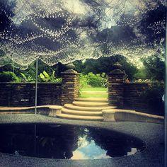Cloud Terrace, Dumbarton Oaks Gardens