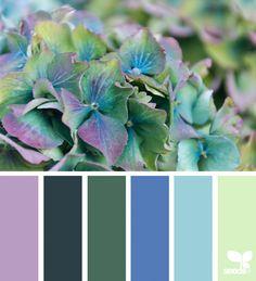 Flora Hues   Design Seeds