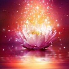 ¡Descubre que es el Karma! Él puede gerar una acción, en esta vida o al largo de todas sus encarnaciones. ¡Conoce las 12 Leyes del Karma!