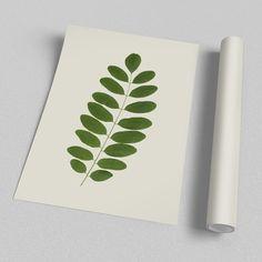 Poster - Acácia Leaf - Decohouse