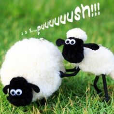 Grazing pom pom sheep