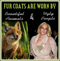 Fur, worn by beautiful animals and ugly people.
