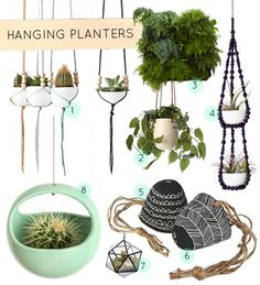 Since I seem to do better with indoor plants than I do outdoor.... I need some sweet hanging planters