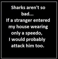 Sharks aren't so bad Funny, quotes, Shark, stranger