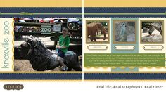 Knoxville Zoo Studio J layout