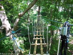 Treetop thrills at the Adventure Park in Virginia Beach - Casual Travelist