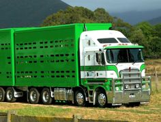 Kenworth T800 Kenworth Pinterest Kenworth Trucks