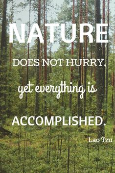 Remember: you are part of nature.