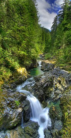opal creek wilderness, oregon.... One of my favorite places in the whole wide world