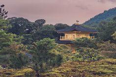 Five views of the Golden Pavilion or Kinkaku, the main attraction of Rokunji (aka Kinkakuji) temple in Kyoto, Japan. Main Attraction, Kyoto Japan, Travel Images, Landscape Photos, The Good Place, Cabin, House Styles, World