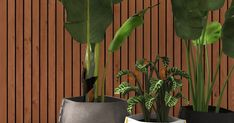 EcoSmart Fire Installation: Outdoor Setting Plant Pot Collection, Digital Render
