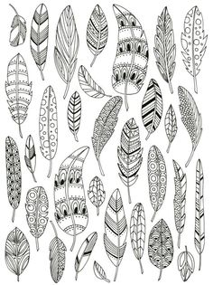 Zentangle feathers colouring page Doodle Art, Doodle Drawings, Bird Doodle, Zentangle Patterns, Embroidery Patterns, Doodle Patterns, Doodles Zentangles, Henna Patterns, Bullet Journal Inspiration