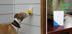 Ringing Pebble Smart Doggie Doorbell  Pebble Smart Doggie Doorbell  Door-scratching to bell-ringing. An inventive solution to a vexing problem for dog owners.   Taking Donations to get this project going. U contribute at this link to help fund this idea.