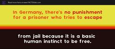 In Germany, there's no punishment for a prisoner who tries to escape from jail because it is a basic human instinct to be free.