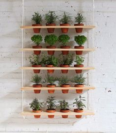 Gardening Herb DIY Hanging Garden from HomeMade Modern - This DIY vertical garden is an easy-to-make project that can turn a window into a beautiful and productive herb garden. Get Complete Step-by-Step Instruc. Hanging Herb Gardens, Vertical Herb Gardens, Hanging Herbs, Diy Hanging, Vertical Planter, Herb Garden Pallet, Diy Herb Garden, Garden Ideas, Garden Web