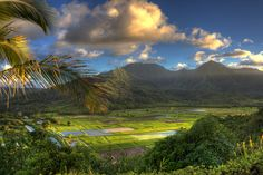 7 Explorers Name The Most Beautiful Place Theyve Ever Seen-A morning shot of Hanalei Valley. (Scott Ingram Photography via Flickr)