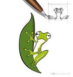 Charakter Design  #vectorgraphics #frog #margithaslauer Illustration, Design, Illustrations