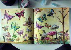The butterfly garden from Emily's wonderland #emilyswonderland