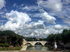 Buongiorno con questo scatto da #Roma: il cielo blu il #Tevere e un immancabile gabbiano by lacronacaitaliana