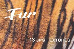 Fur Textures by Blue Line Design on Creative Market