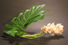 Google Image Result for http://keithstanley.com/wordpress/wp-content/uploads/2011/11/Double-mouth-ikebana-vase.jpg