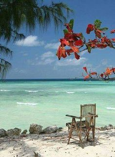 Chair by the ocean, ready to sit and enjoy a vacation well deserved. Beach Bodys, I Love The Beach, Peaceful Places, Beach Scenes, Tahiti, Dream Vacations, Beautiful Beaches, Beautiful World, Destinations