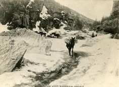 Packtrain in Box Canyon Skagway Trail. White Pass leads from Skagway,   Alaska through the Boundary Ranges of the Coast Mountains to the lakes   at the headwaters of the Yukon River. This was one of the routes used by   prospectors during the Klondike Gold Rush. Creation Date: ca. 1899.   Courtesy: Washington State Historical Society (WSHS), Tacoma, WA (USA).