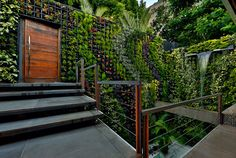 Villa Joa, Rio De Janeiro, Brazil | villas for rent, villas to rent