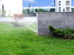 Sisteme de irigatii, eco-horticultura servicii Plants, Horticulture, Plant, Planets
