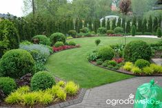 Ogród mały, ale pojemny;) - strona 76 - Forum ogrodnicze - Ogrodowisko