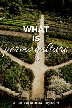 Permaculture is an approach to designing human settlements and perennial agricultural systems that mimics the relationships found in natural ecosystems. Click to learn more... #garden #gardening #organicgarden #permaculture #homesteading #urbangarden #smallfarms #climatechange #organicfarms #feedingtheworld #nogmos #gmofree #sustainability #sustainableagriculture #localfarms #localfood #eatlocal