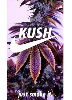 Kush... Just Smoke It From RedEyesOnline.net
