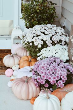 A Pink Fall Front Door Decor & Pink Pumpkins - The Pink Dream - - How to decorate your front door with pink accents! From pink pumpkins to pink mums, everything you will need for a gorgeous pink fall! Fall Kitchen Decor, Fall Home Decor, Fall Door Hangers, Pink Halloween, Pink Pumpkins, Fall Door Decorations, Fall Planters, Front Door Decor, Front Porch Fall Decor