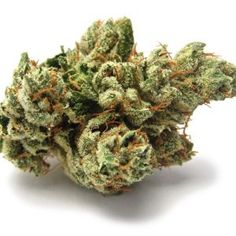 Legal weed fly is a Fast, Friendly, Discrete, Reliable cannabis online dispensary which ships top grade bud around the world. Buy marijuana Online USA and Buy marijuana online UK or general Buying marijuana online has been distinguished by the superior quality of our products and by our overall focus on wellness and wide variety of marijuana strains for recreational use. Go to .... https://www.legalweedfly.com